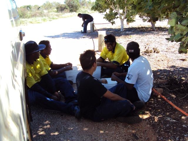 taking a break from rehabilitating degraded bush