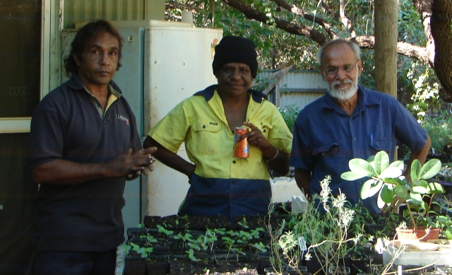growing seedlings for the Kimberley and Pilbara landscapers