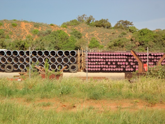 Vine forest adjoining the Toll Transport yard at Broome Port with Browse bore casing