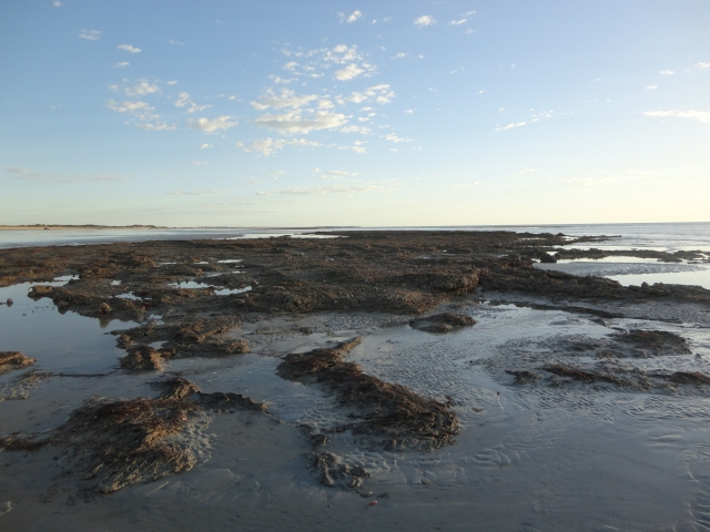 Cable Beach, Broome at low tide Kings