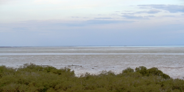 Dampier Creek relegated to a tiny channel at low tide