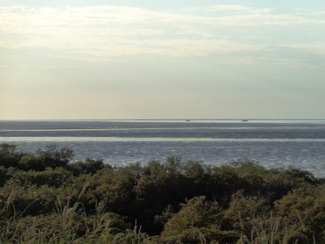 low king tide2