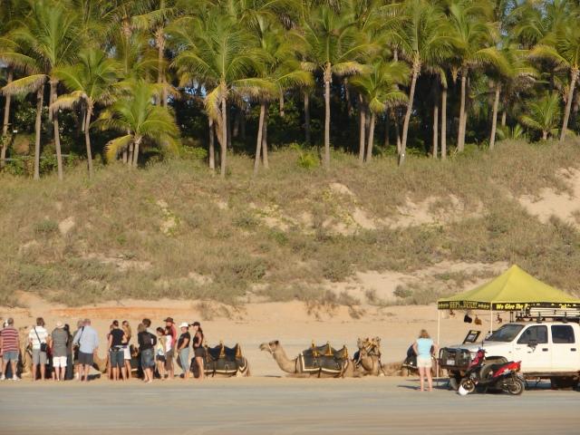 Beach 026