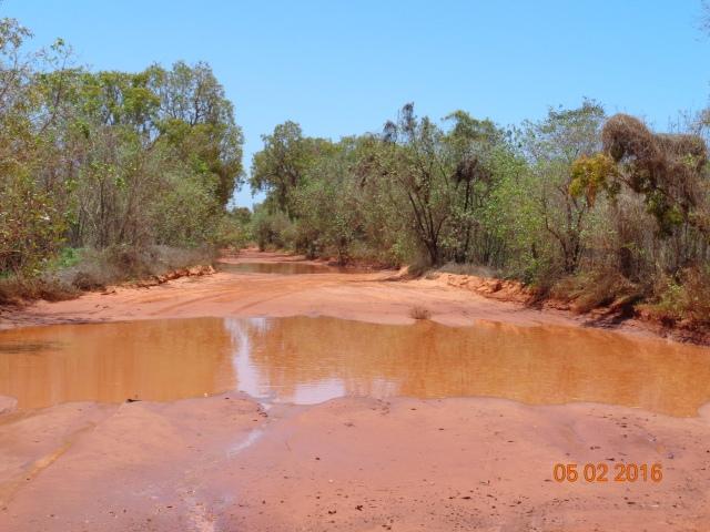 Track through Walmadan vine forest north of Broome