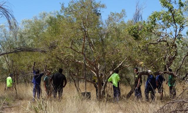 A group of volunteers tackling restoration work.