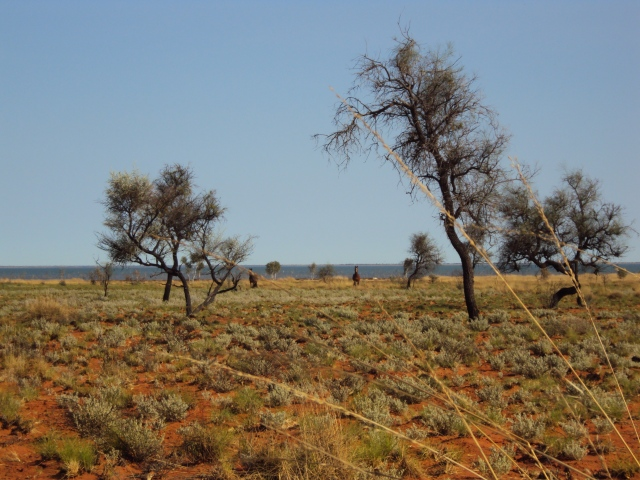 mulan-halls-creek-083